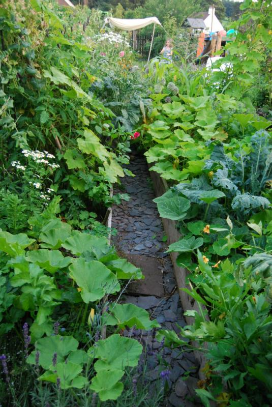 Learn to Design Plant an Edible Garden Humble by Nature Wye