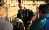 Tutor Tim Stephens for An Introduction to Keeping Sheep course at Kate Humble's Farm Humble By Nature