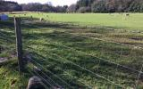 Learn stock fencing at Humble by Nature Kate Humble's farm in Monmouth South Wales