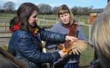 Liz Shankland Beginners Smallholding course at Humble by Nature