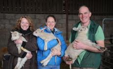 The 24 hour lambing course at Kate Humble's Farm Humble by Nature