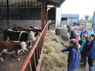 Kids Course things to do at half-term at Humble by Nature Kate Humble's farm in Monmouth S Wales