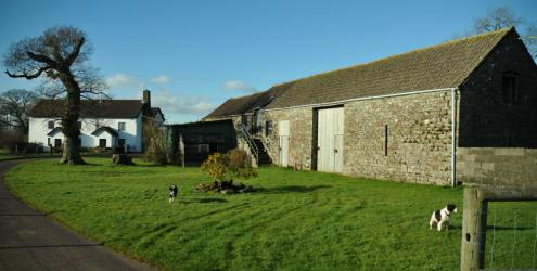 Kate Humble's Farm, Humble by Nature, in the sunshine