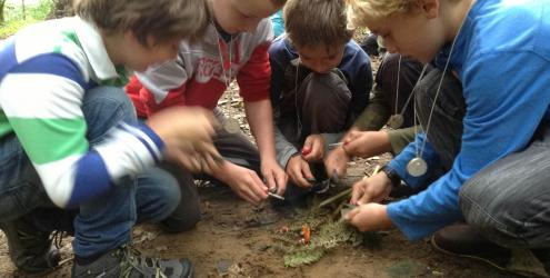 Family bushcraft at Kate Humble's farm Humble by Nature in Monmouth South Wales