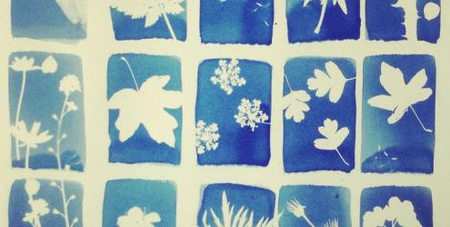 Learn cyanotype print making at Humble by Nature Kate Humble's farm in Monmouth South Wales