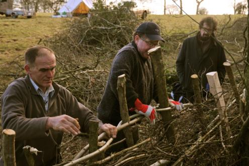 Learn how to lay hedges at Kate Humble's farm Humble by Nature in Monmouth South Wales