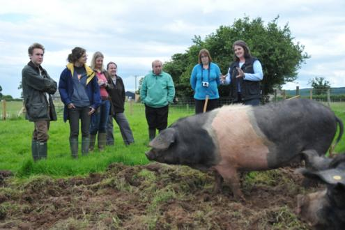 Beginners smallholding course at Kate Humble's Farm Humble by Nature
