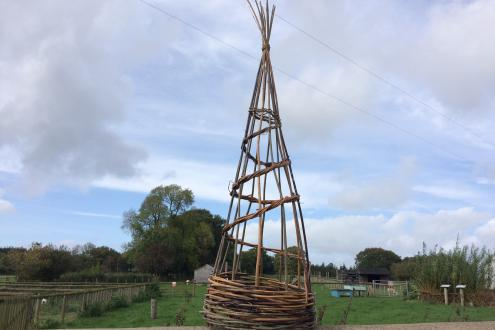 Weave a Willow Christmas Tree at Humble by Nature