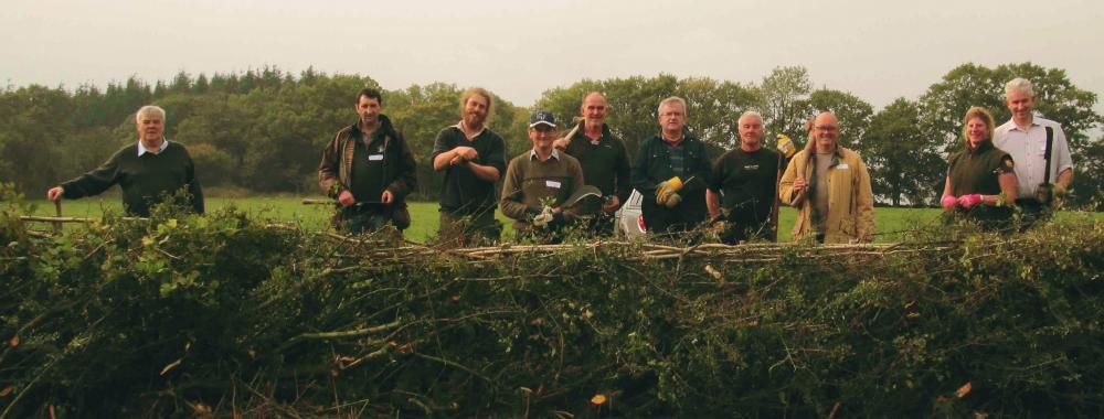 Learn to lay hedges at Humble by Nature