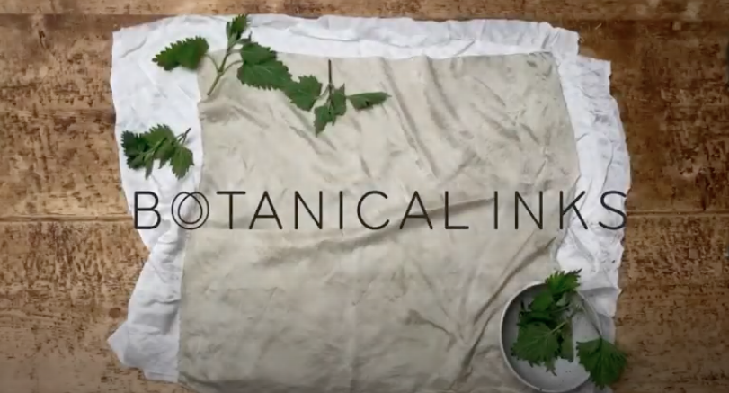 Simple nettle ink recipe from Botanical Inks