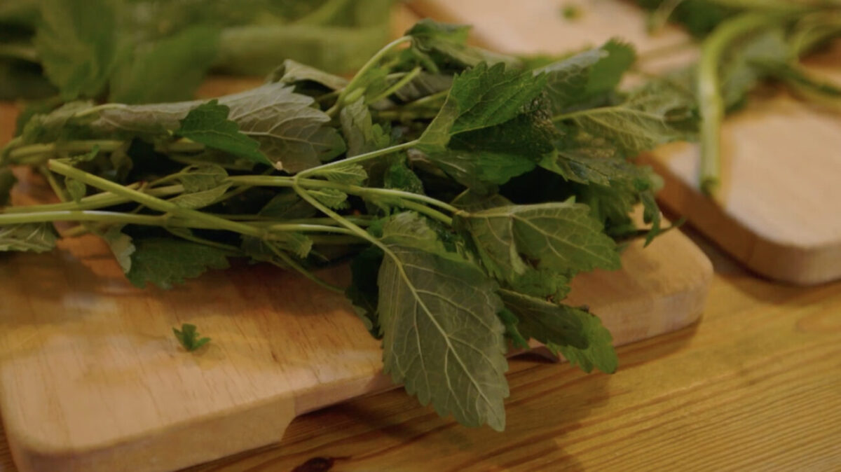 wild salsa verde recipe escape to the farm